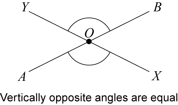 Vertically Opposite Angles (6)