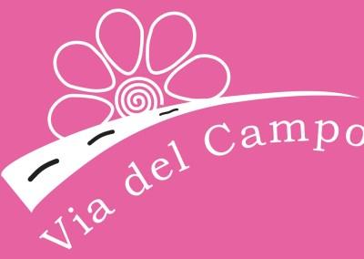 """Progetto Centro Polifunzionale Via Del Campo """"Focus prostituzione Cinese"""", 2014-2015"""