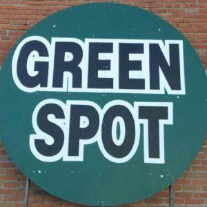 Green Spot Garden Center & Antiques