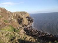 Part of the coastline where I like to walk