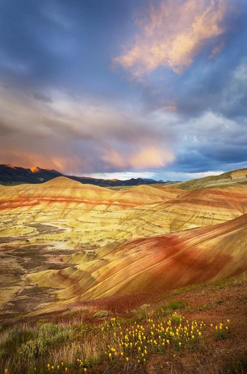 Painted Hills Oregon Oregon Desert Photography