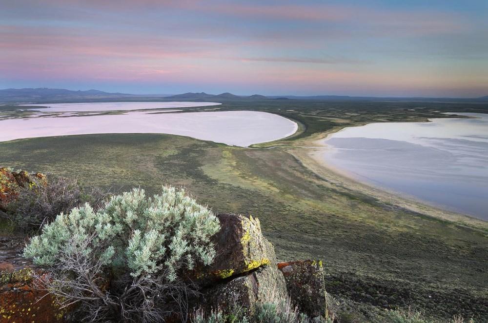 Warner Lakes Wetlands, Oregon Oregon Desert Photography