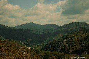 El maravilloso color verde de Oaxaca