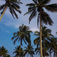 Chaparrales, la playa desconocida de Veracruz