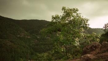 En lo alto de las montañas de San Andrés Tianguistengo, Actopan, Hidalgo, México.