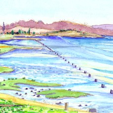 27_Pinole_Point_South