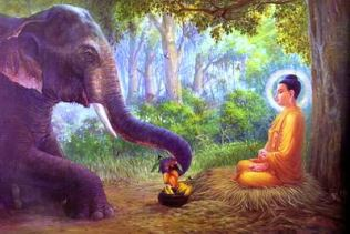 Elephant offering to the Buddha