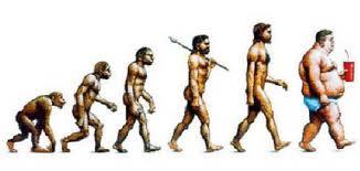 weight-evolution