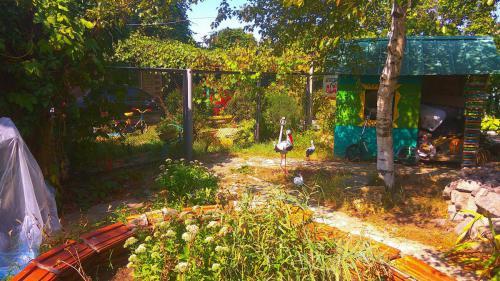 гостевой двор камышовая бухта (28)