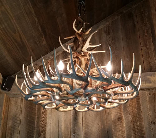 Double Turn Whitetail Antler Chandelier