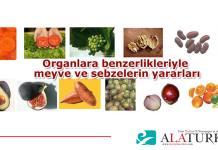 sebze-ve-meyvelerin-faydalari-nedir