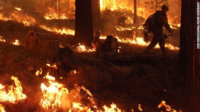 California yangını 19 gündür sürüyor!