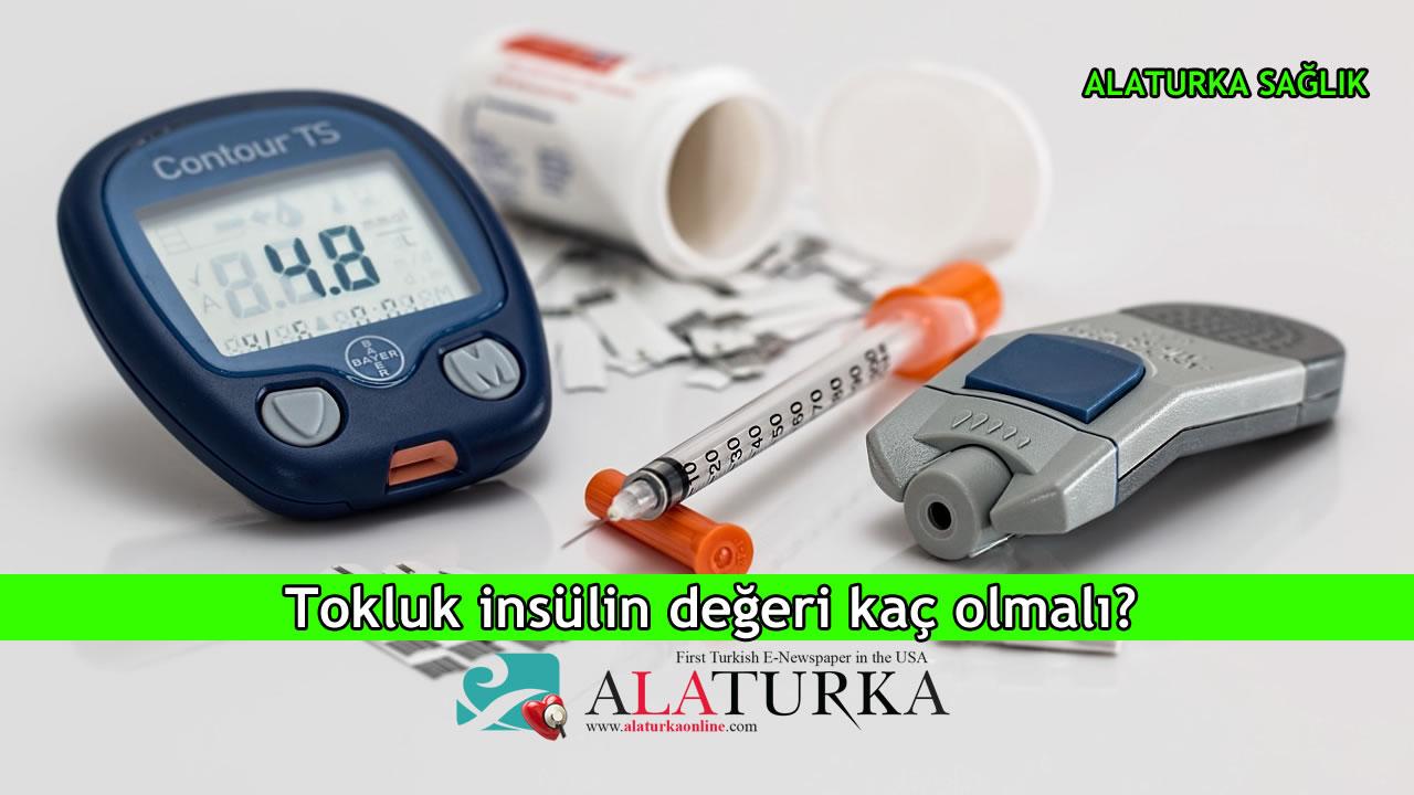 Tokluk insülin değeri kaç olmalı?