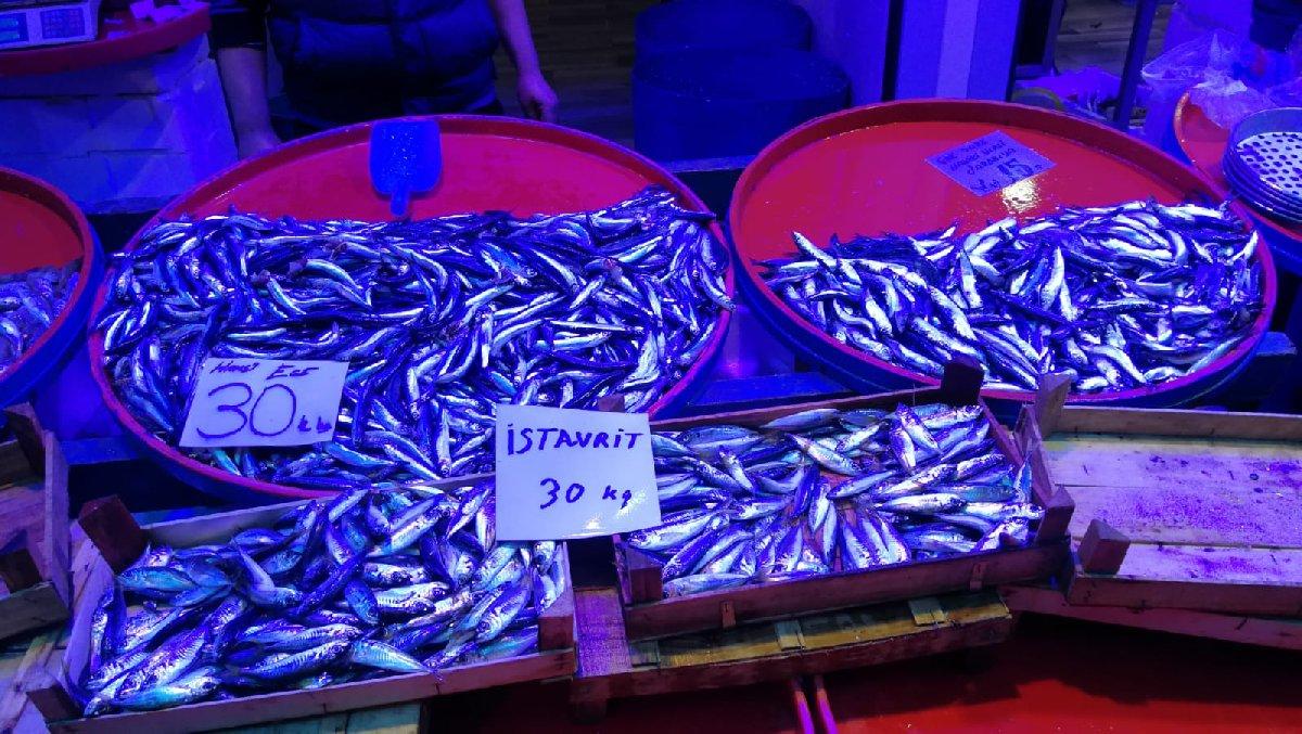 Balık fiyatlarında fırtına ve denizanası etkisi