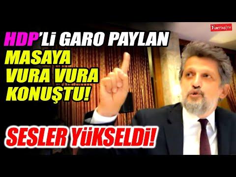 HDP'li Garo Paylan masaya vura vura konuştu! Bütçe Komisyonunda sesler yükseldi!