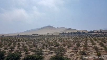 paysage entre Lima et Huaraz