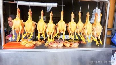 Pollo !