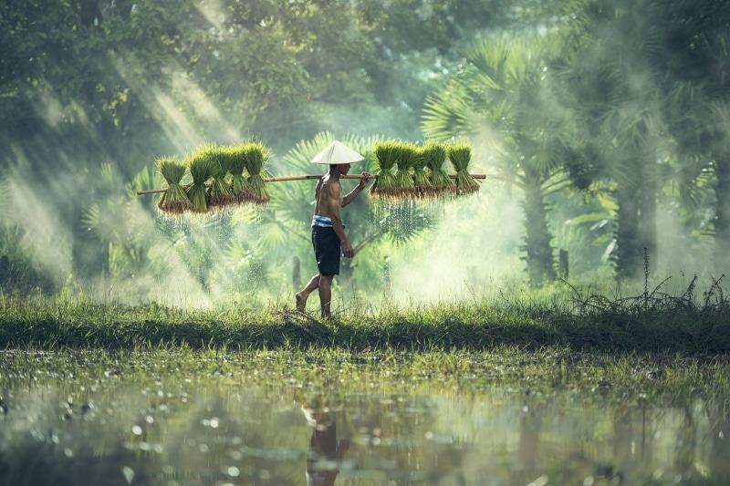 Laos – nos dates et itinéraire