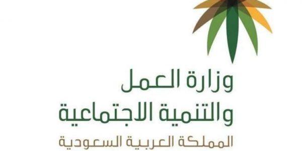 طريقة استعلام عن موظف سعودي برقم الهوية الوطنية