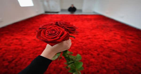 الورد في المنام للعزباء وللمتزوجة والحامل