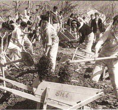 ALBANIA 1975 - La gioventù shqipetare contribuisce....... volontariamente ed allegramente alla edificazione del Paradiso Comunista