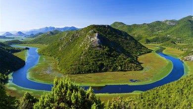 """Parco Nazionale """"Lago di Scutari"""", Montenegro"""