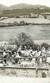 """Jäckh089: """"Albanian wedding procession in the open countryside. The bride and the cart with her dowry"""" (Photo: Bank Director A. Grohmann, Saloniki, ca. 1910. Courtesy of Rare Books and Manuscript Library, Columbia University, New York, 130114-0008)."""