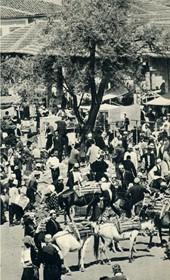 GM149: Market scene in central Albania (Photo: Giuseppe Massani, 1940).