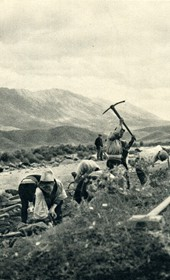 GM151: Road construction in central Albania (Photo: Giuseppe Massani, 1940).