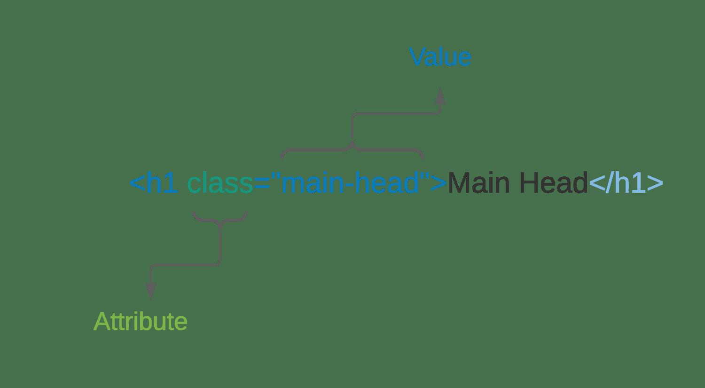 html attributes - الباشمبرمج