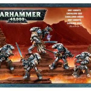 Squadra Epuratrice dei Cavalieri Grigi