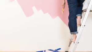 Get Your Interior Painting Done By A Professional: Here Are Five Reasons Why