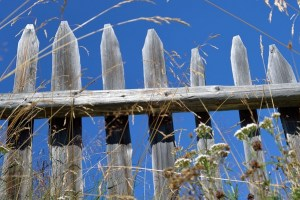 How Can Weather Affect a Fence?