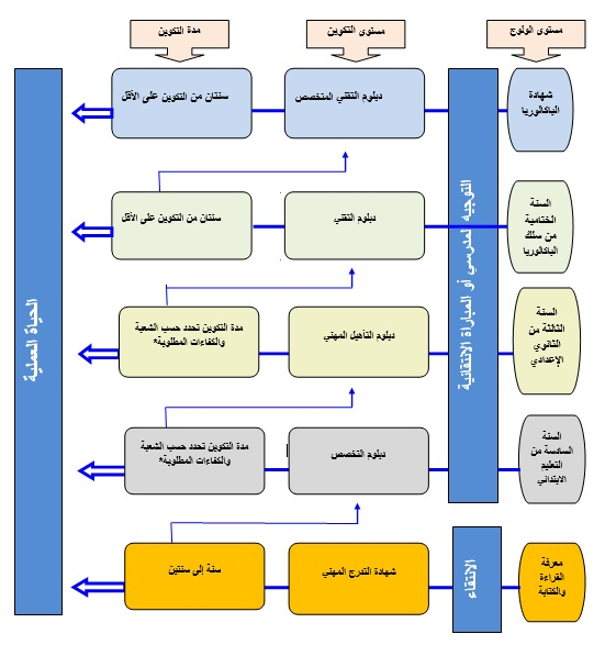 تنظيم مؤسسات التكوين المهني بالمغرب