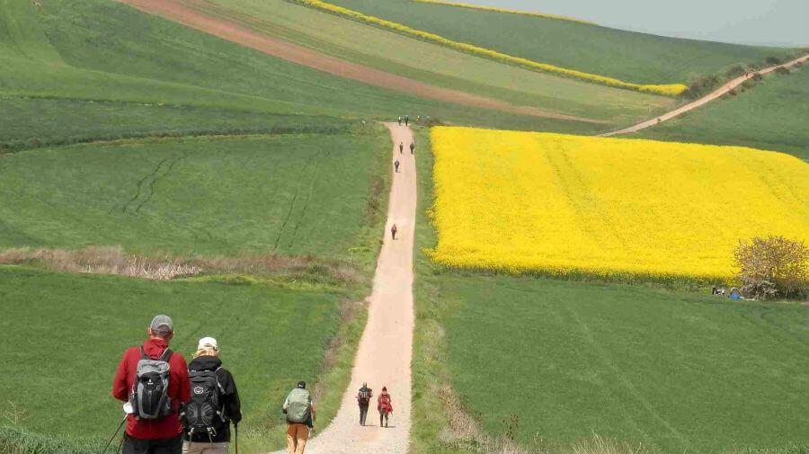 Peregrinos del Camino de Santiago atravesando La Rioja :: Albergues del Camino de Santiago