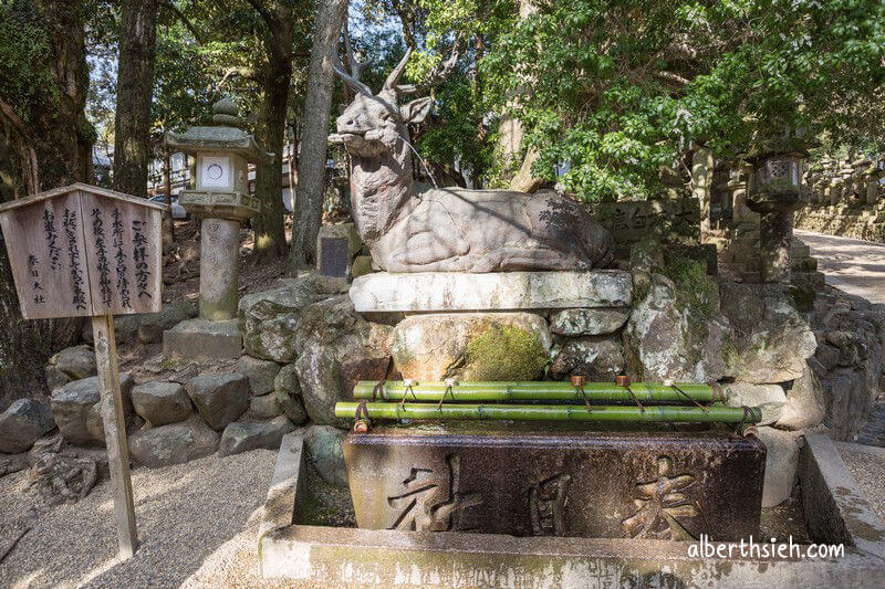 春日大社.奈良景點