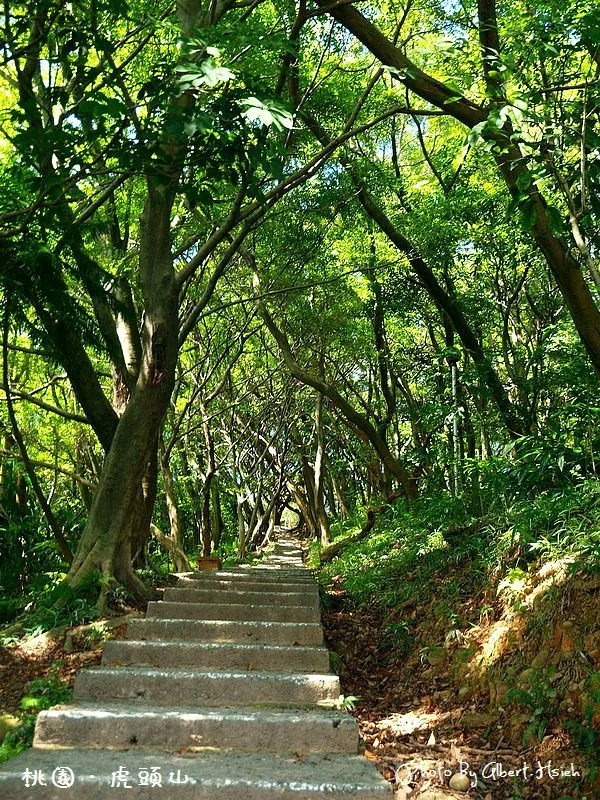 【爬山】桃園市.虎頭山公園(午後放輕鬆)