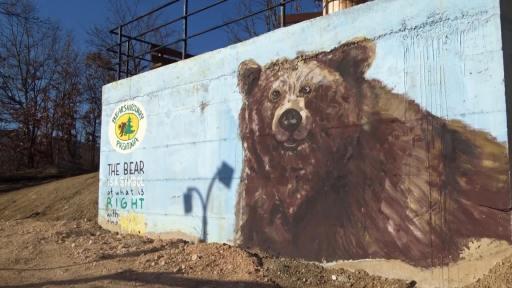 Santuari d'óssos a Pristina