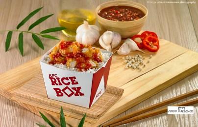 rice-box3