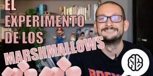 el experimento de los marshmallows