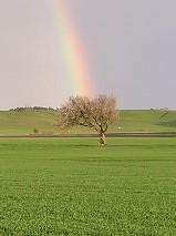 Åska och regnbåge Alberslund