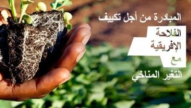 """صورة تونس تشارك في مبادرة """"تكييف الفلاحة الافريقية مع التغيرات المناخية"""""""