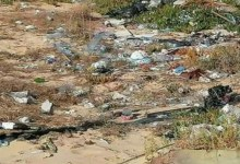 Photo of TRASH, CLEAN UP YOUR OWN!