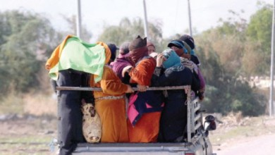 صورة العاملات التونسيات في وضع هش