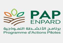 صورة في إطار مبادرة الجوار الأوروبي للتنمية الفلاحية والريفية بتونس: الاجتماع الثالث للجنة القيادة لبرنامج الأنشطة النموذجية