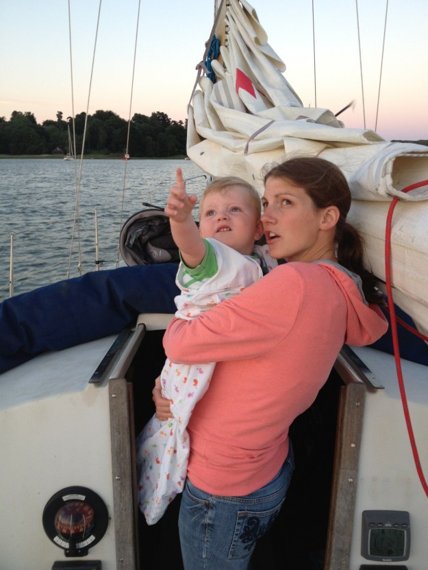 Bedtime on the Deben seagull spotting