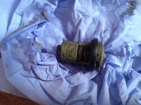 The Removed thermostat before cleaning