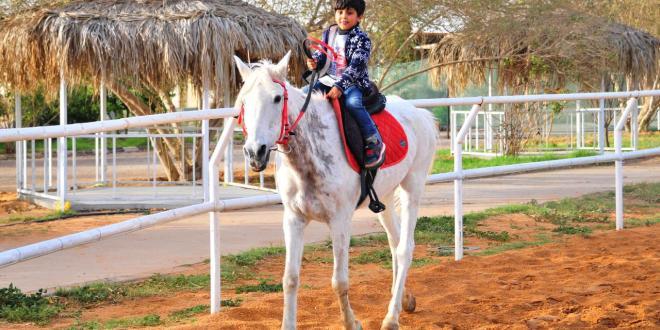 نادي صهوة الأصايل النسائي للفروسية بالبكيرية يقدم برامج لتعليم ركوب الخيل ولأطفال التوحد Albukairyah I البكيرية