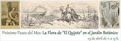 La Flora del Quijote en el Jardín Botánico de la UAH
