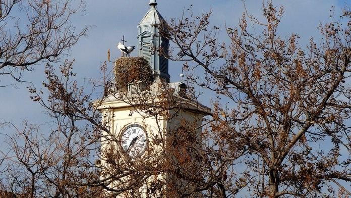 Las cigüeñas del reloj municipal